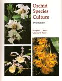 View larger image of 'Orchid Species Culture - Dendrobium'