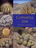 View larger image of 'Copiapoa 2006'