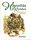 View larger image of 'Haworthia Revisited'
