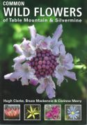 View larger image of 'Common Wild Flowers of Table Mountain & Silvermine'