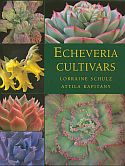 View larger image of 'Echeveria Cultivars'
