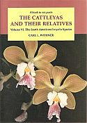 View larger image of 'The Cattleyas and their Relatives vol 6 - The South American Encyclia species'