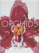View larger image of 'Orchids'